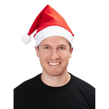 Adult Red Santa Hat