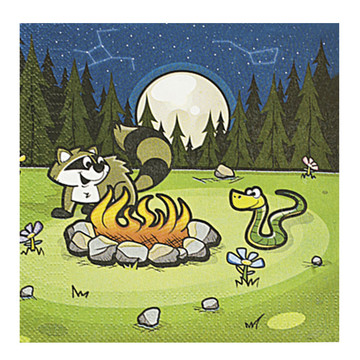 Camp Adventure Luncheon Napkins (16 Count)