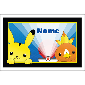 Catch 'Em All Personalized Placemat (Each)
