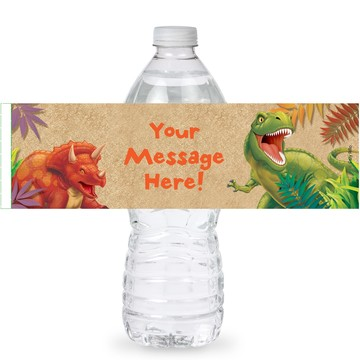 Dinosaur Adventure Personalized Bottle Labels (Sheet of 4)
