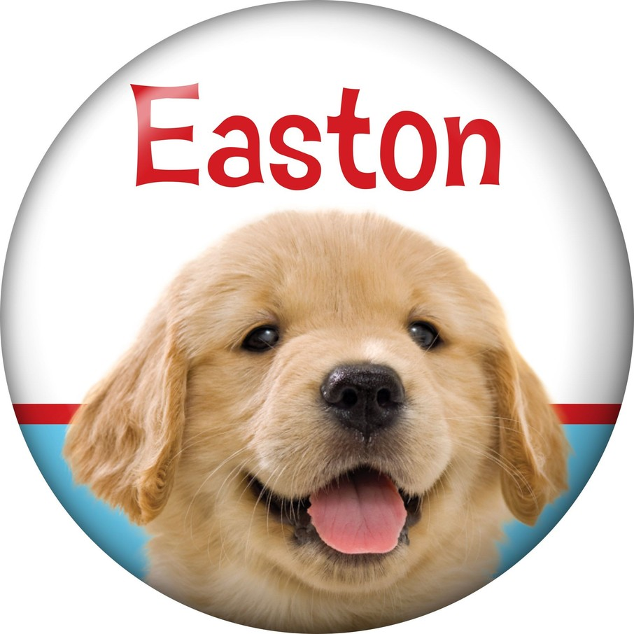 View larger image of Dog Party Personalized Mini Magnet (each)