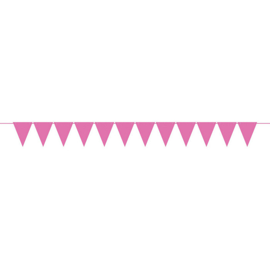 View larger image of Mini Create Your Own Pink Pennant Banner
