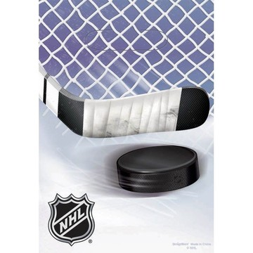 NHL Hockey Party Favor Bags (6 Pack)