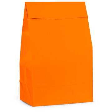 Orange Paper Favor Bags (12 Pack)