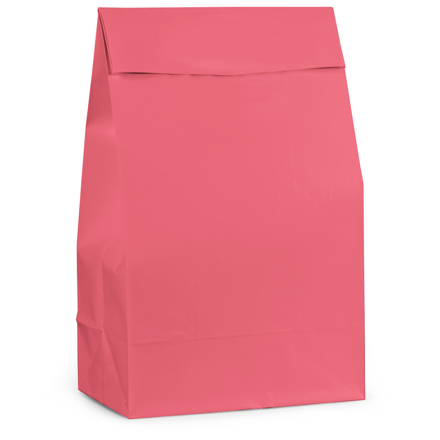 View larger image of Pink Paper Favor Bags (12 Pack)