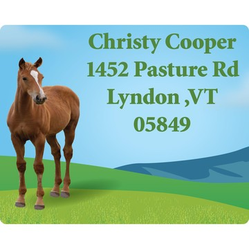 Pony Party Personalized Address Labels (Sheet of 15)