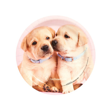 Glamour Dogs Dessert Plates by Rachael Hale (8)