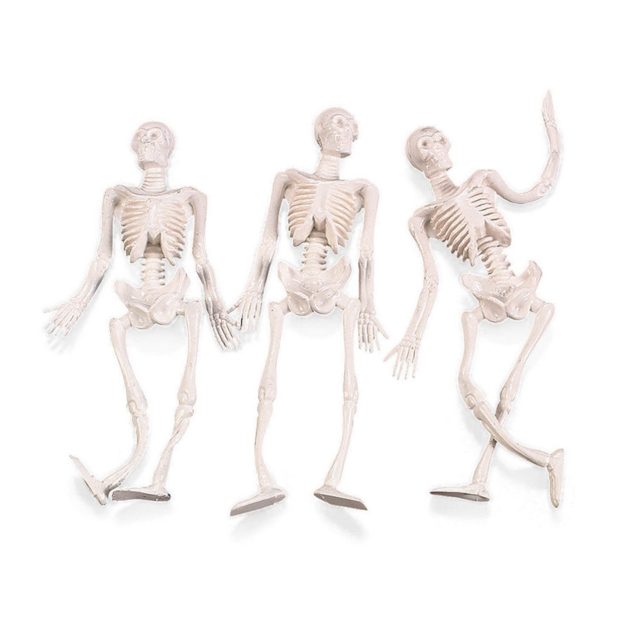 View larger image of Stretchy Skeletons (12)
